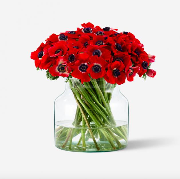 Valentine's red flowers