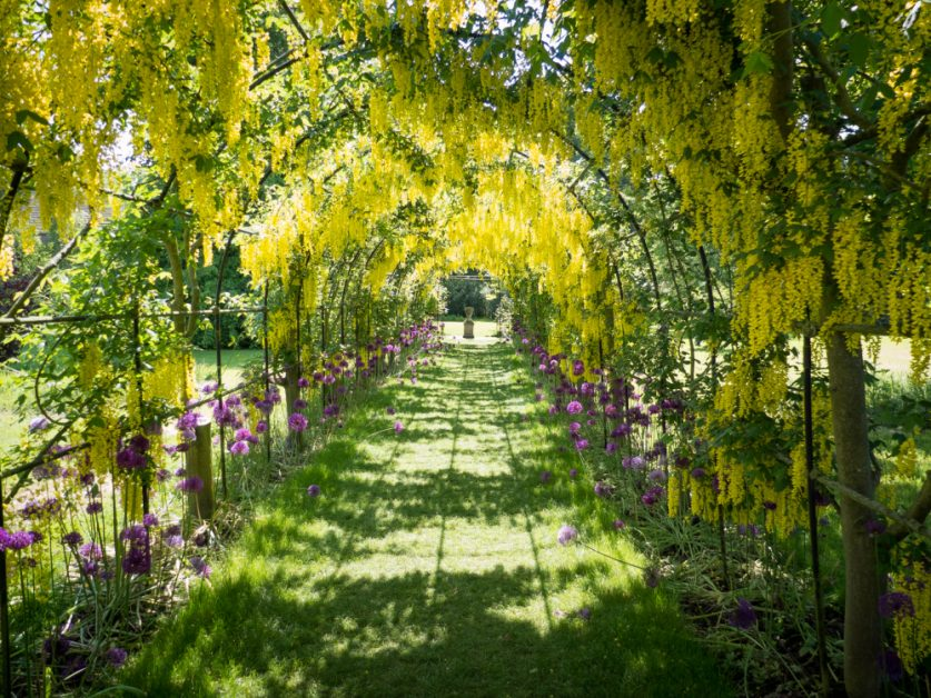 best spring gardens in the UK Seaton Delaval Hall, Northumberland