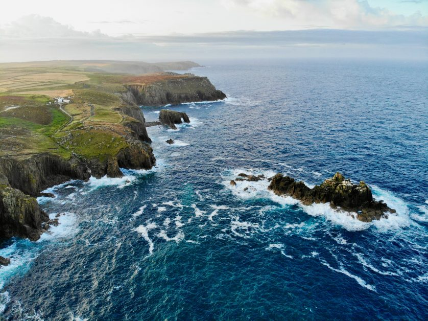Cornish coast best places to see wildlife in the UK
