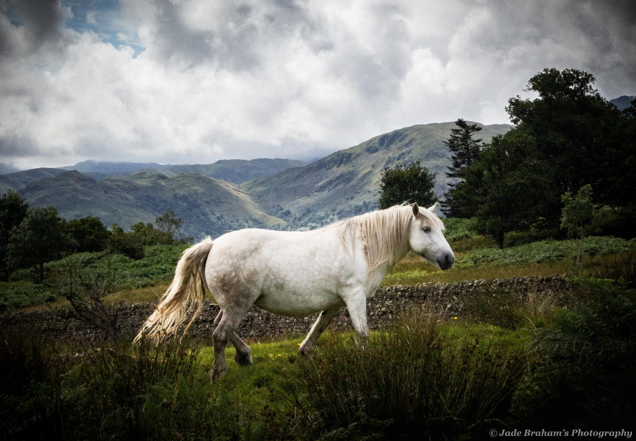underrated UK holiday destinations walk to Aira Force waterfall Ullswater