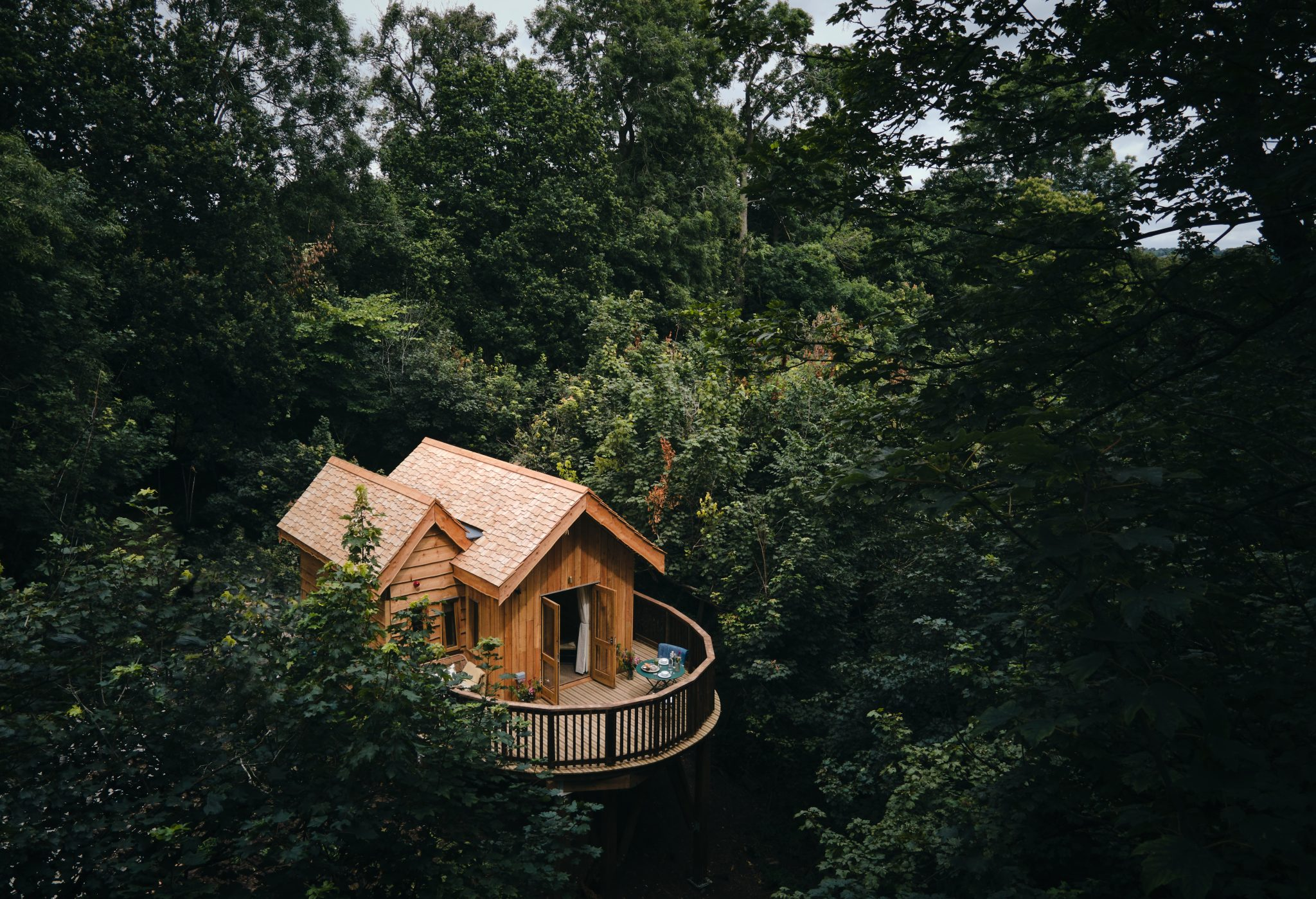 Callow Hall treehouse