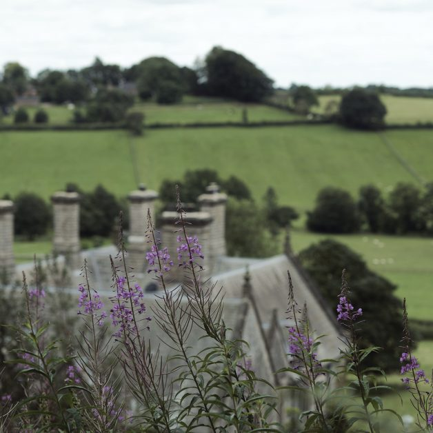 Callow Hall hive view